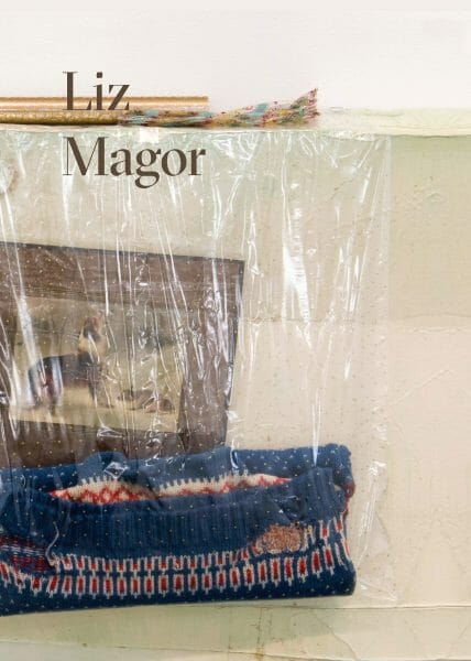 Catalogue Liz Magor