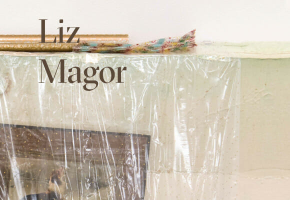 Catalogue Liz Magor