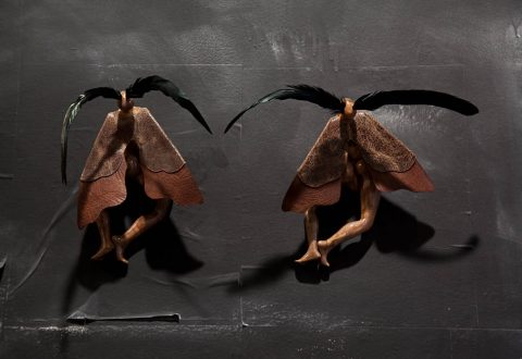 Wangechi Mutu, Moth Girls, 2010