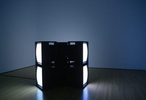 Kelly Mark, Porn (de la série Glow Video), 2005