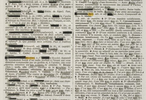 Rober Racine, Page-Miroir (Bichromate – 181 – Bien), 1980 – 1994