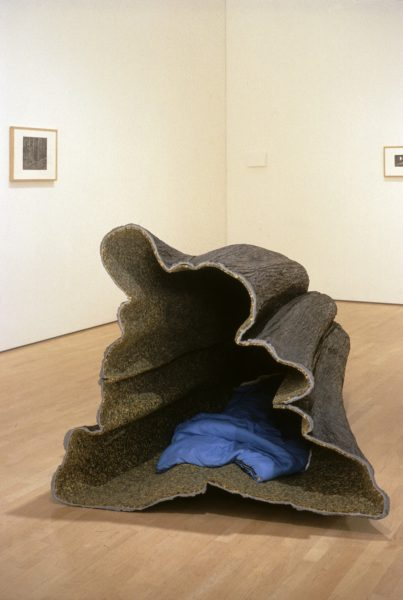 Liz Magor, <i>Hollow</i>, 1998-1999