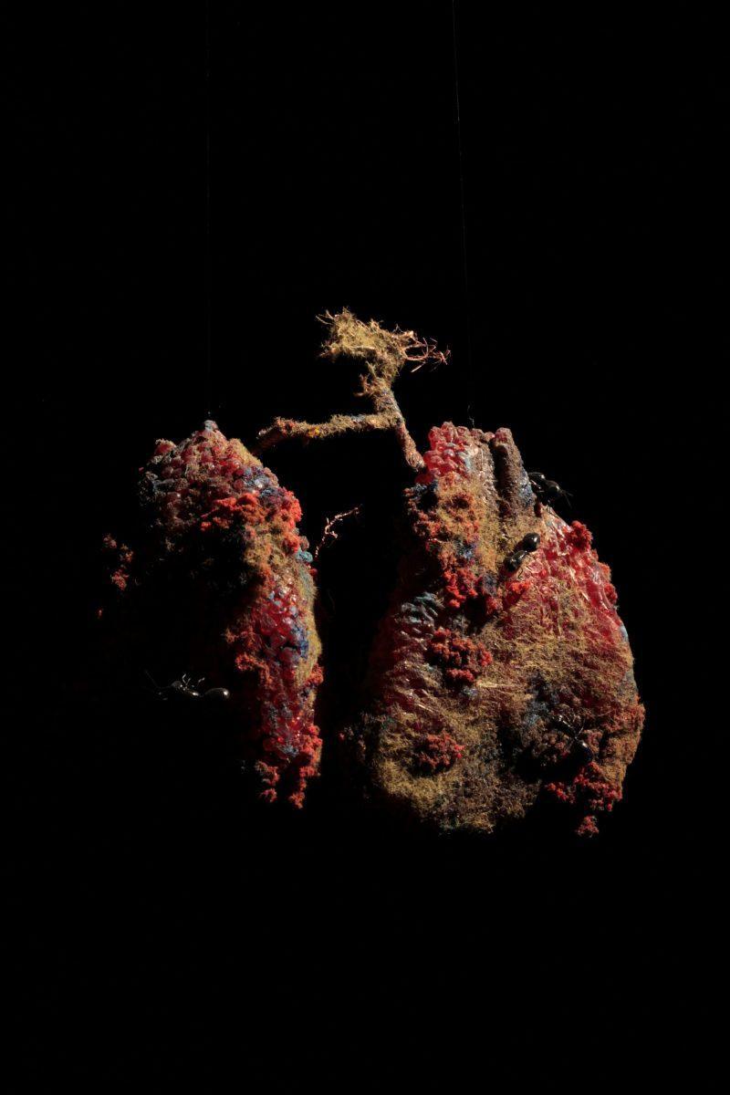 Charles Lavoie, <i>L'Organe</i>, 2014
