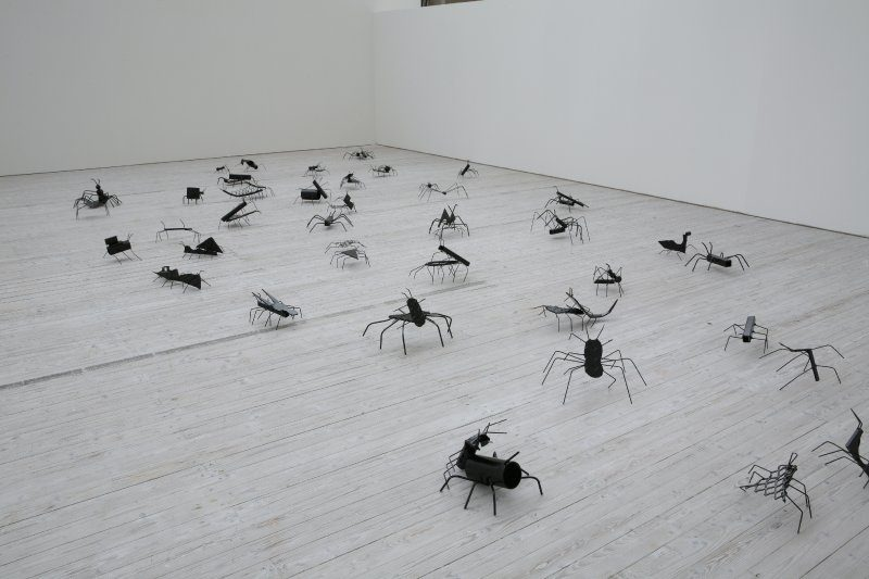 David Shrigley, Insects, 2007