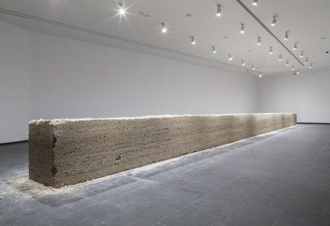 Teresa Margolles, La Promesa [The Promise], 2012