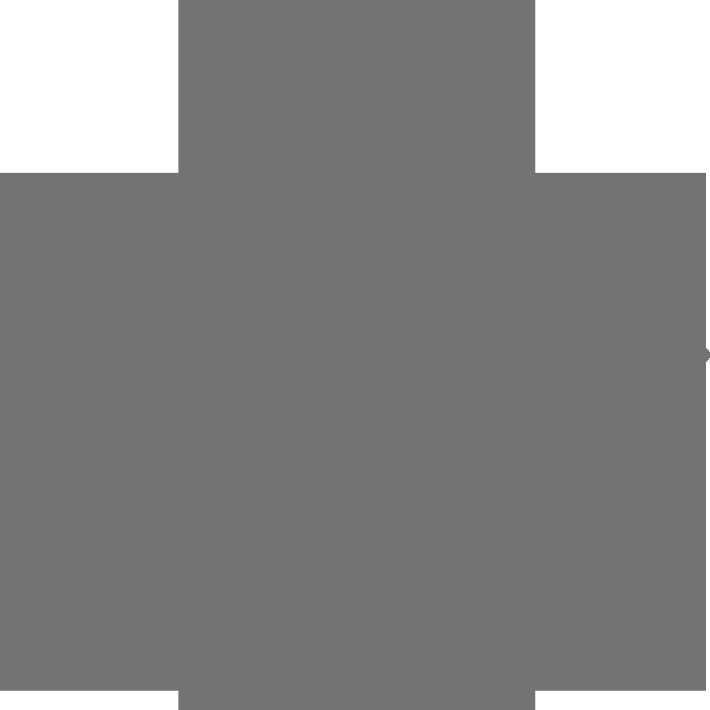 logo-birks