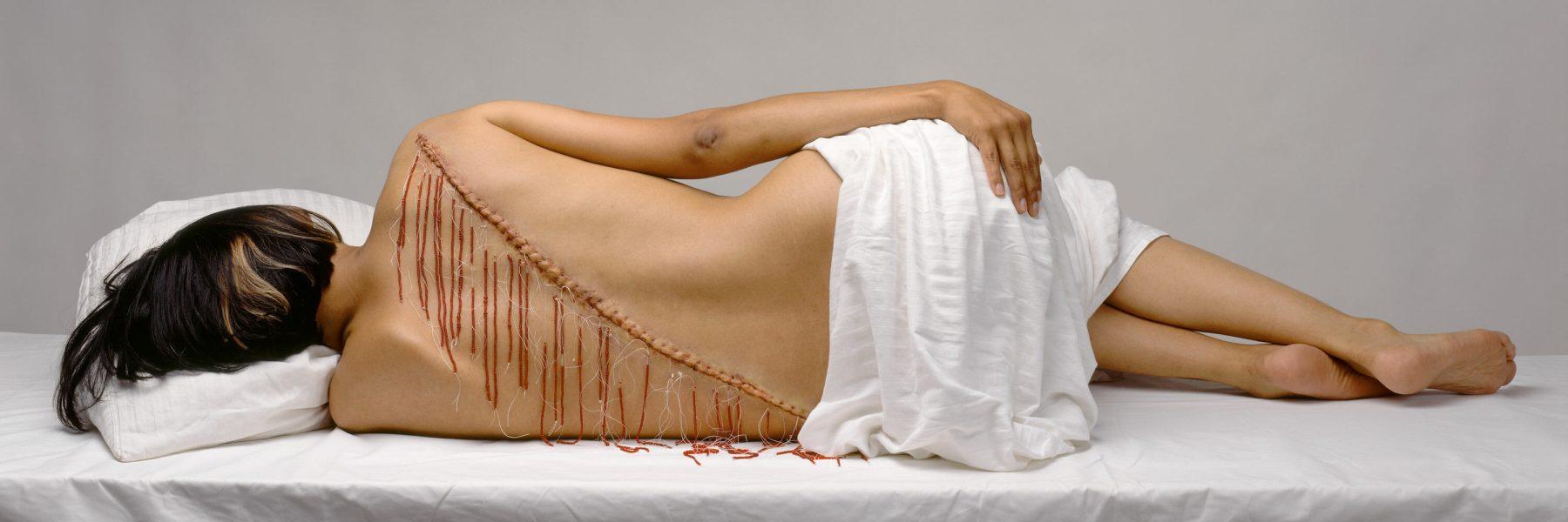 Rebecca Belmore, <i>Fringe</i> [Frange], 2008