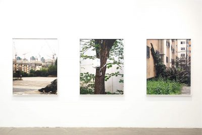 Jinyoung Kim, Apparitions of Collective Disposition, Triptych, 2019