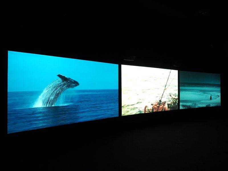 John Akomfrah, <i>Vertigo Sea</i>, 2015, view of the installation