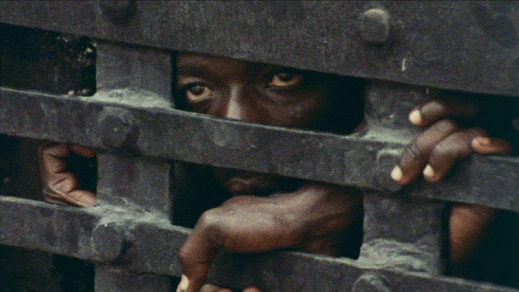 John Akomfrah, <i>Vertigo Sea</i>, 2015, film still
