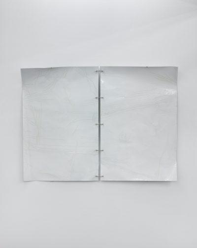 Marie-Michelle Deschamps, Occasional Work, 2019