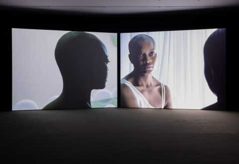 Isaac Julien, <i>True North</i>, 2004