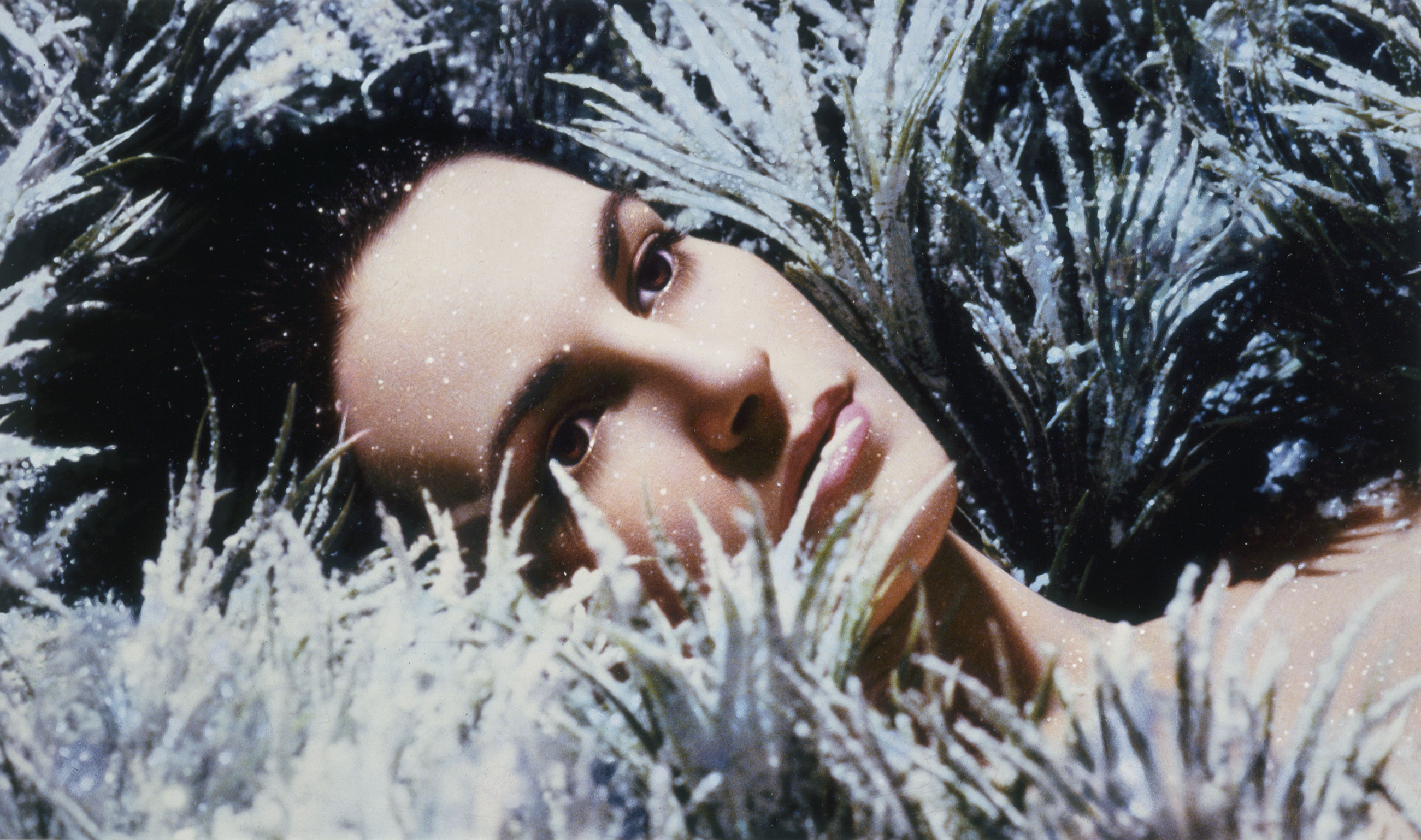 Lio dans les herbes, 1984, Pierre et Gilles, Épreuve à développement chromogène peinte.