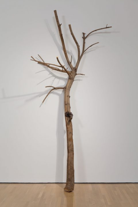 I Have Been a Tree in the Hand, 1984-1991, Wood and iron.