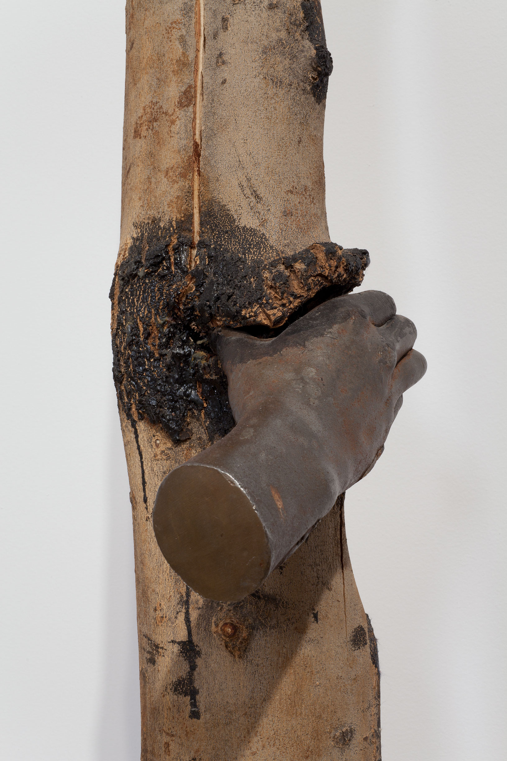 Giuseppe Penone I Have Been A Tree In The Hand 1984 1991