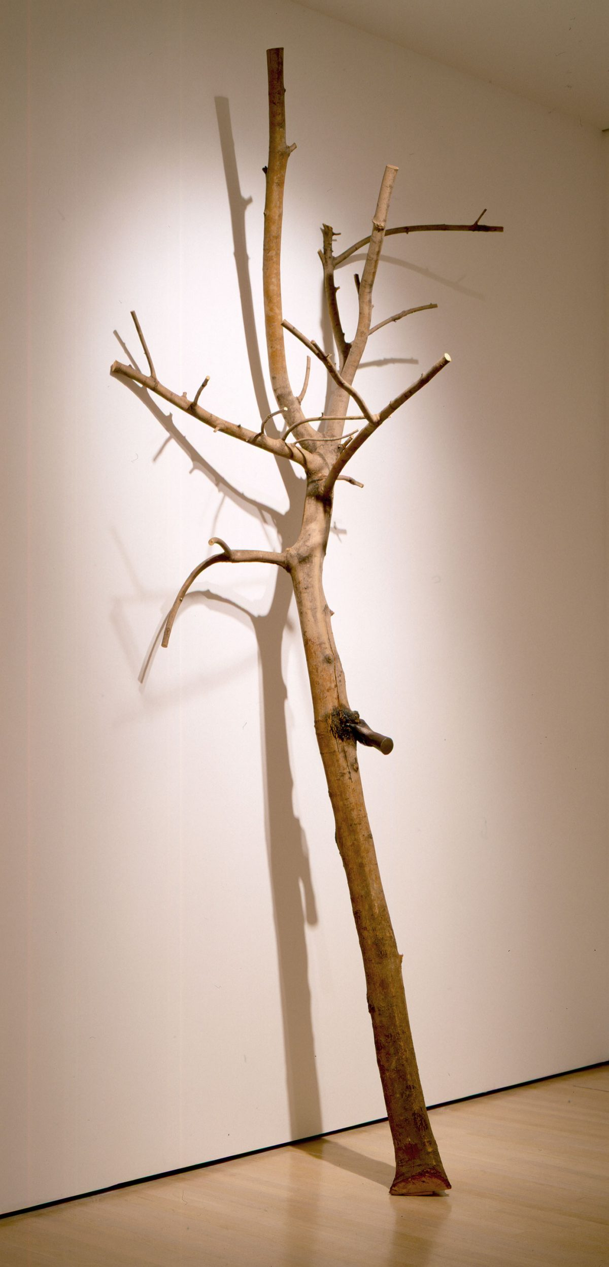 I Have Been a Tree in the Hand, 1984-1991, Giuseppe Penone, Bois et fer.