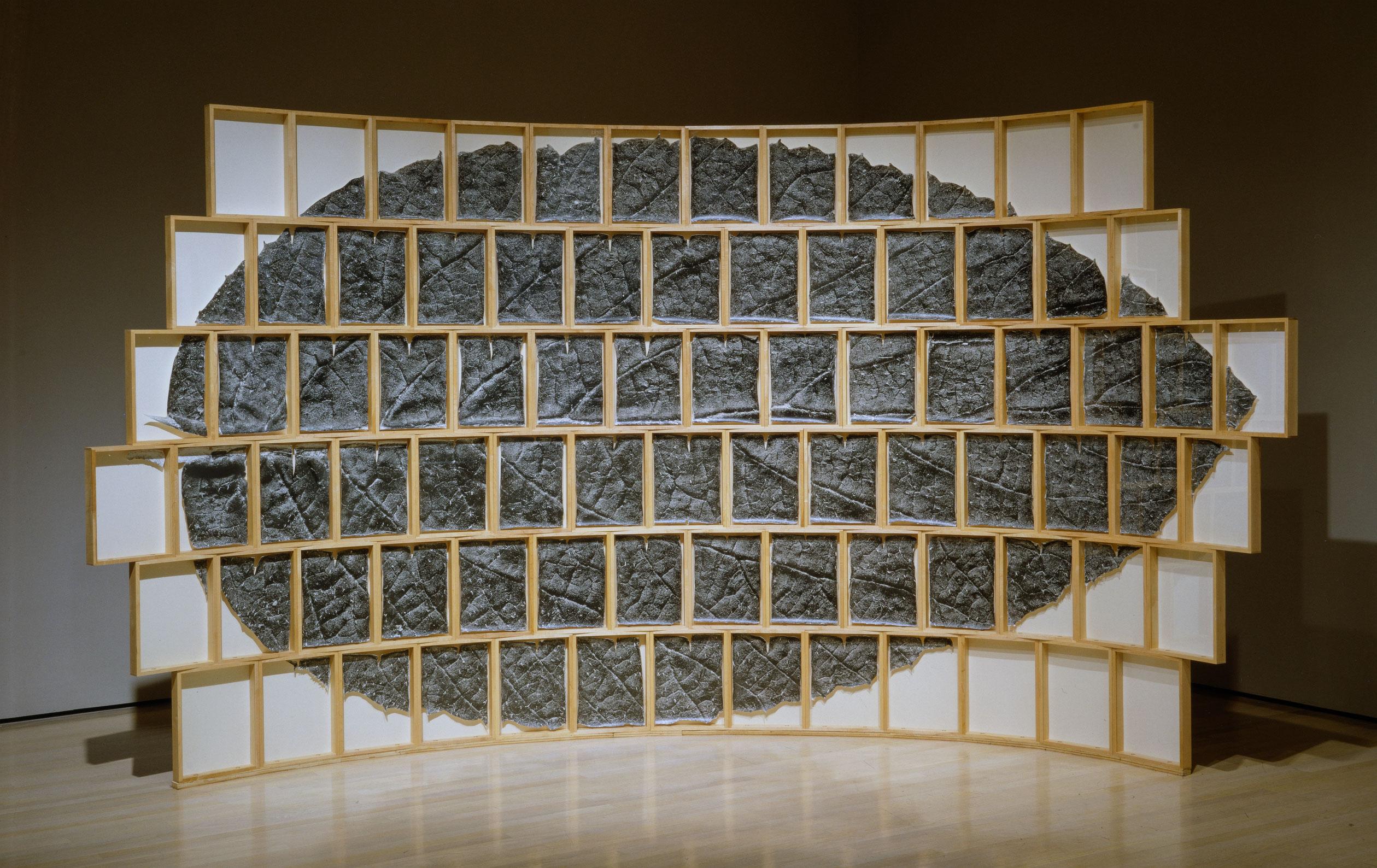 Fragments (de la série «Le Chasseur d'images», 1991 - 1994), 1992, Roberto Pellegrinuzzi, 82 épreuves à la gélatine argentique, 82 cadres de bois et aiguilles, 1/3.