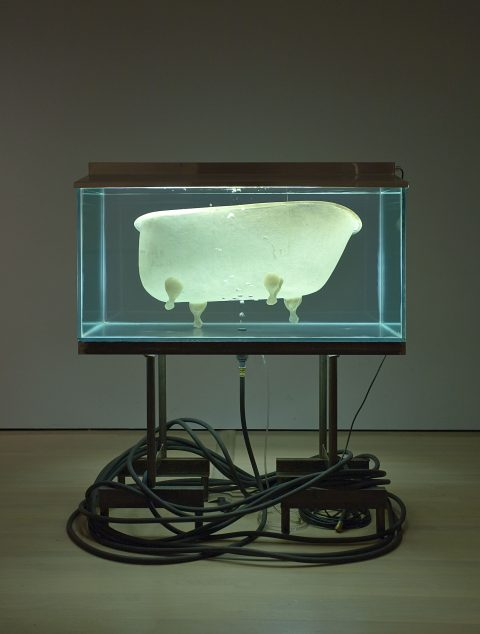 Silence and Slow Time, 1994, Glass, steel, aluminium, fiberglass, rubber pipe, pump, fluorescent light and water.