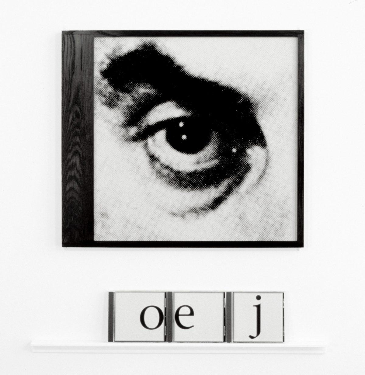 détail de L'Œil acoustique, 1997, Raymond Gervais, 5 épreuves argentiques encadrées, 15 boîtiers de disques compacts avec feuillets insérés et 5 moulures de bois peint.