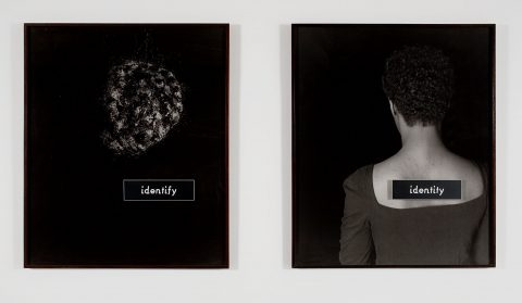 ID, 1990, 2 gelatin silver prints, frames and plastic plates, 3/4.
